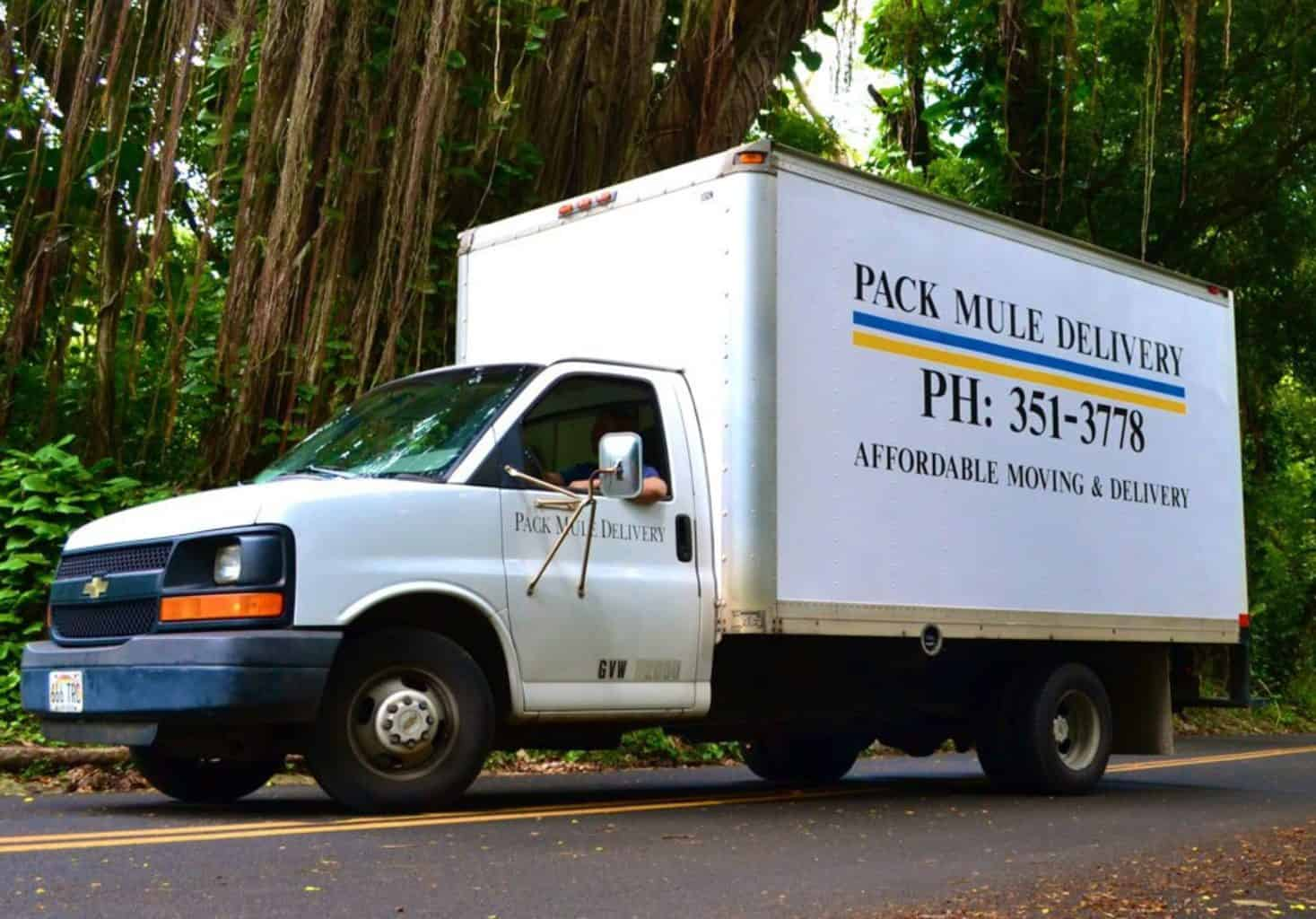 Pack Mule Moving and Delivery | Call Us Today 351-3778